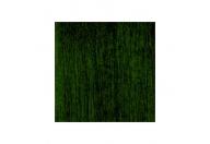 Vert forêt