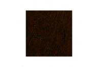 Poirier chocolat